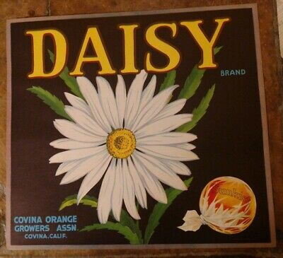 AUTHENTIC CRATE LABEL DAISY FLOWER COVINA VINTAGE ADVERTISING 1930S CALIFORNIA
