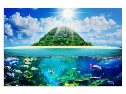 Tropische Unterwasserwelt Leinwandbilder auf Keilrahmen A05991 Wandbild Poster