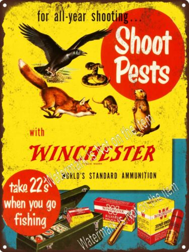 "Winchester 22 Pest Fishing Ammunition Fox Crow Metal Sign 10x12/"" A304"