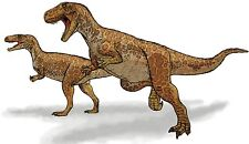 Sticker decal dinosaur dino jurassic wall children room kid decor megalosaurus