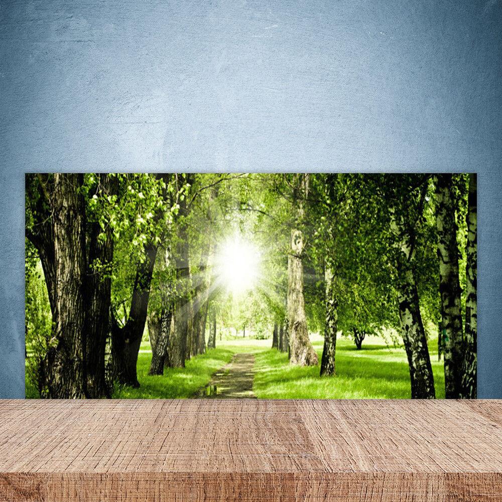 Crédence de cuisine en verre Panneau Paroi 100x50 Nature Forêt Sentier Soleil
