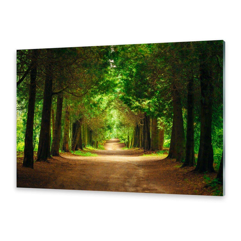 Acrylglasbilder Wandbild aus Plexiglas® Bild Gehweg Bäume