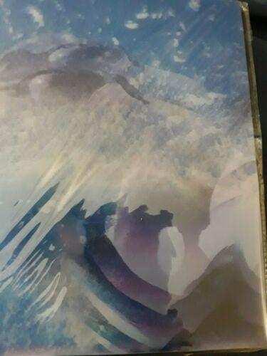 New Plastic Poly Pocket Folder 3D Motion Graphics Killer Whale Portfolio Animal