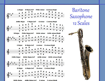 ORCHESTRATE 12 SCALES FOR LEAD SAX IMPROVISE ALTO SAXOPHONE POSTER