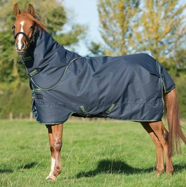 Horseware Amigo Pony Bravo  12 Turnout PLUS MEDIUM 250gNavy & verdecoperta pascolo