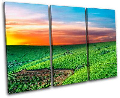 Field Landscapes TREBLE CANVAS WALL ART Picture Print VA