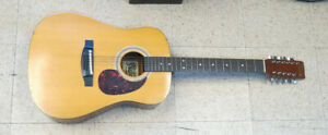 Rhapsody FG-330  Acoustic Guitar 12 string