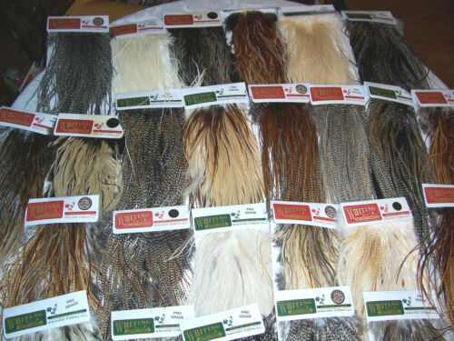 25 ASSORTED WHITING PREMIUM DRY FLY SADDLE HACKLE FLY TYING FEATHERS ASST SIZES