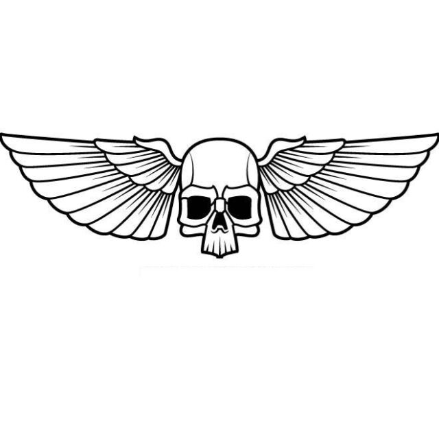 Skull With Wings Car Decal Sticker Ebay