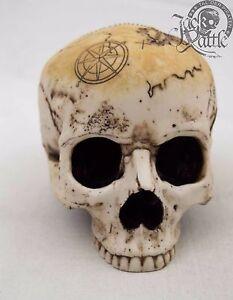 Pirat Treasure Skull Totenkopf Schatzkarte Schadel Totenschadel Piraten N3 Ebay