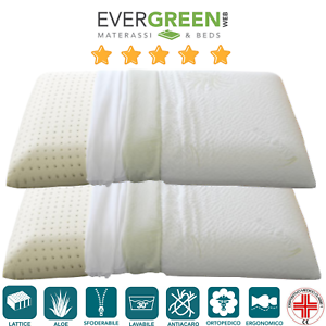 Meglio Cuscino In Lattice O Memory Foam.Evergreenweb Cuscino Lattice O Memory Foam Tessuto Aloe Vera