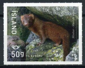 Iceland Wild Animals Stamps 2020 MNH Mink Norden Mammals Fauna 1v S/A Set