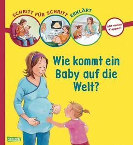 Schritt für Schritt erklärt Wie kommt ein Baby auf die ...
