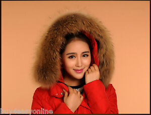 Real-Raccoon-Fur-Collar-Down-Jacket-Hood-Trimming-Scarf-Brown-70-18cm-28X7-034-US