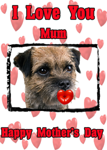 Border terrier dog nmd51 fun cute mothers day card personalised image is loading border terrier dog nmd51 fun cute mother 039 m4hsunfo