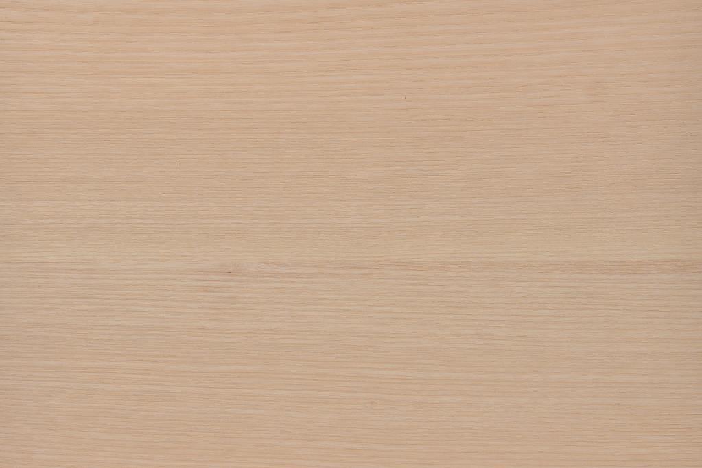 Esche ash body Korpus blank Tonholz tonewood