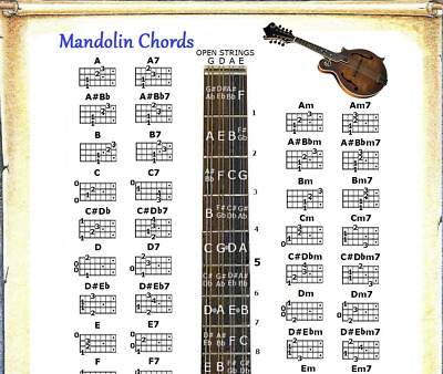 FRETBOARD LEFT HANDED MANDOLIN CHORDS CHART /& NOTE LOCATOR SMALL CHART