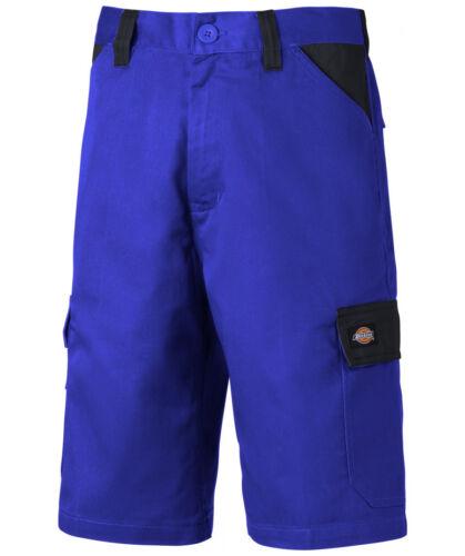 Dickies ED247 Everyday Shorts royal//marine