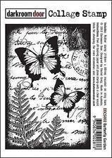 NUOVA CAMERA OSCURA PORTA TIMBRO Collage Farfalla