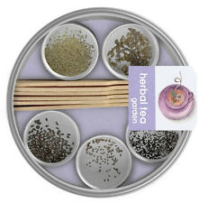 Potting Shed Creations Pocket Garden Herbal Tea Home DIY Plant Spice Steel Case