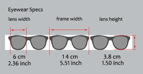 BZ1 Blue Smoke Lens BioHazard Mens Riding Biker Sunglasses UV400