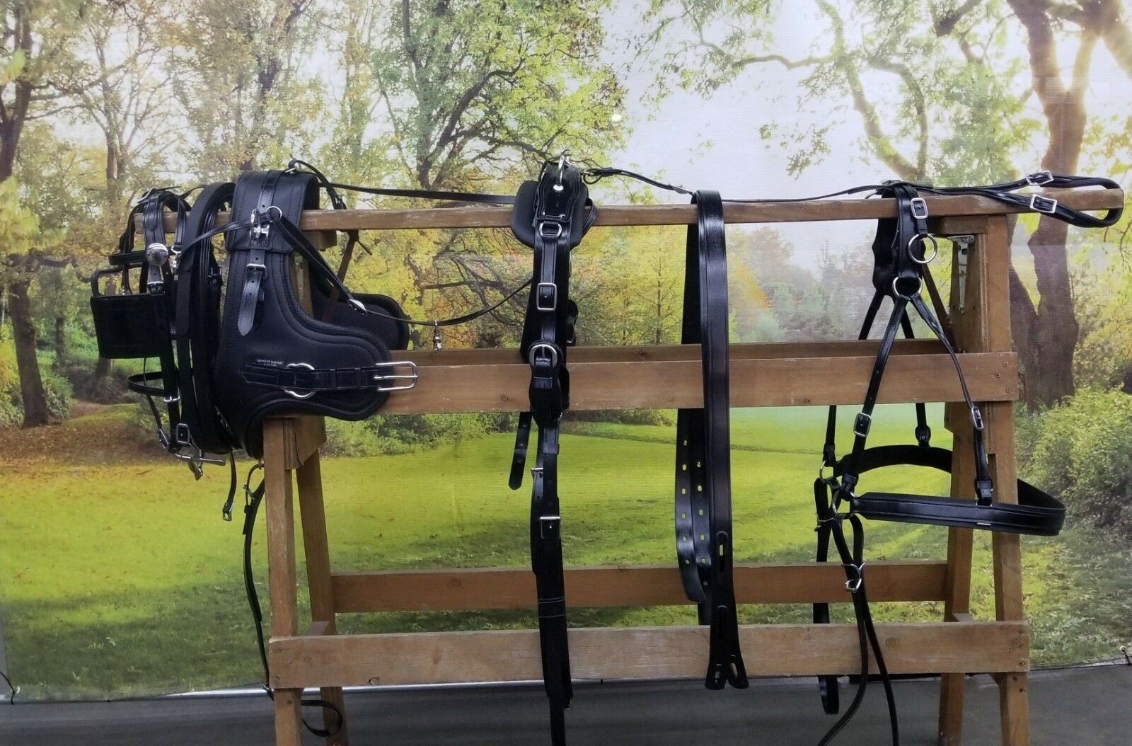 New Amish Made Standard Sport Harness with Brollar Collar All Größes Horse Drawn
