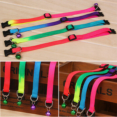 1 Pcs Adjustable Neck Strap Multi-color Small Dog Pet Puppy Leash Lead Flat CA81