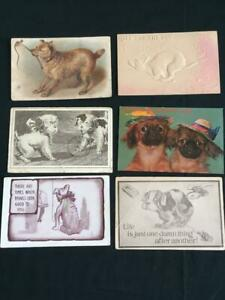 6-vintage-postcards-1910-1916-animals-dogs-embossed-humorous
