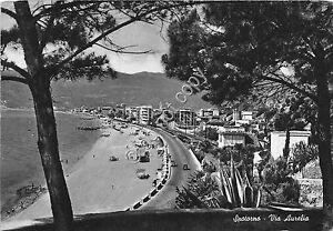 Cartolina-Postcard-Spotorno-Via-Aurelia-dall-039-alto-spiaggia-1956