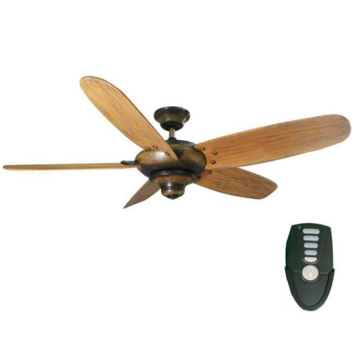 Indoor Gilded Espresso Ceiling Fan Home Decorators Collection Altura 56 in