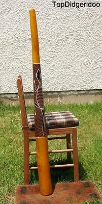 51/""\130cm DIDGERIDOO+Bag+Beeswax Mouthpiece Teak Wood LIZARD Artwork Dot-Paint201|400|?|False|b9618f4931c49091a288d0ca30a092b1|False|UNLIKELY|0.3160983622074127