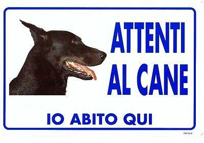 TARGHETTA SEGNALETICA ADESIVA CARTELLO IN VINILE ATTENTI AL CANE 6X18 CM 4X15 CM