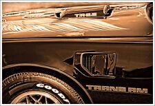 1979 Pontiac Firebird Trans Am Muscle Car Photo Art Print 13x19 6.6 T/A V8 '79