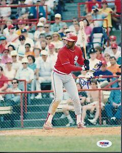 Ozzie Smith Cardinals Signed 8x10 Photo Autograph Auto PSA/DNA AD10507