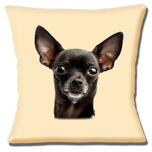 Image Is Loading New Chihuahua Black Dog Large Close Up Of