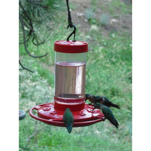 First Nature Hummingbird Feeder 16 Oz Wide Mouth 3051 Easy Clean With 10 Ports