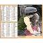 Calendrier-2021-La-Poste-Almanachs-PTT-35-References-Divers-Animaux-Paysages miniature 31