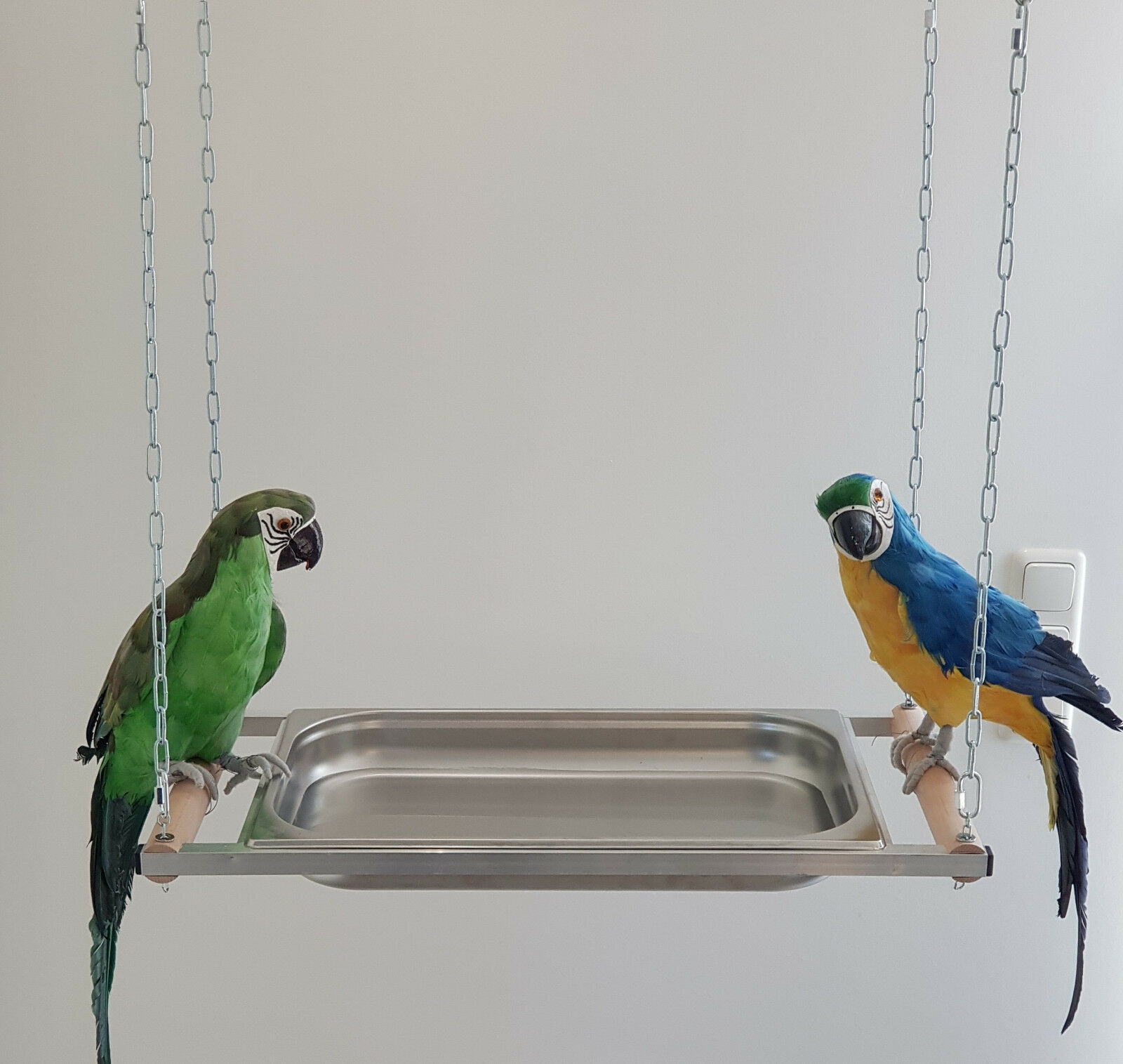 BADEWANNE XXL Edelstahl für alle PAPAGEIEN Ara Amazone Vögel SITTICHE