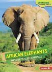 African Elephants: Massive Tusked Mammals by Rebecca E Hirsch (Paperback / softback, 2015)