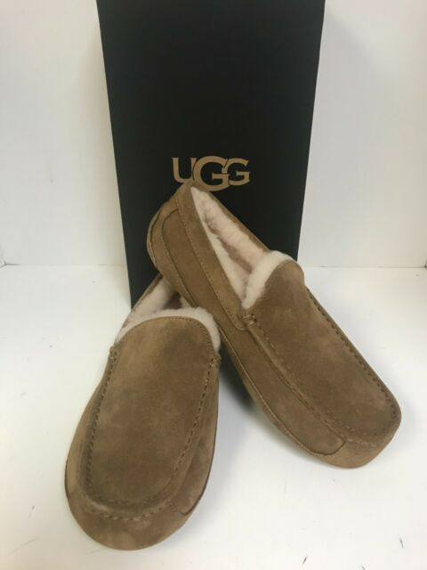 UGG Men's Ascot Chestnut Suede Sheepskin Lined Slippers