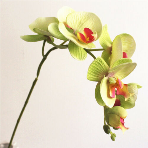 72cm Stem Silk Orchid Phalaenopsis Artificial Flowers Wedding Bouquet Decoration