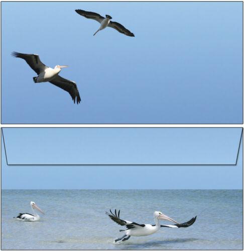Pelikane Set Motivpapier Briefpapier 20 Blatt A4 10 Umschläge Vogel Strand