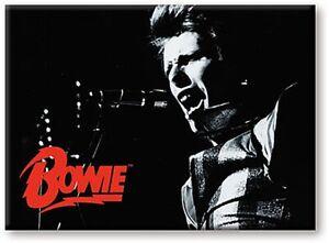 David-Bowie-B-amp-W-Singing-steel-fridge-magnet-nm