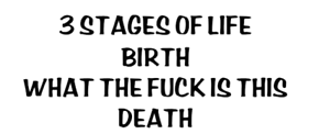 There stages of life birth what the fck is this death decal vinyl  car decal