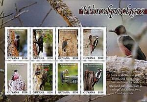 GUYANA-2020-Colorful-BIRDS-WOODPECKERS-M-S-MNH