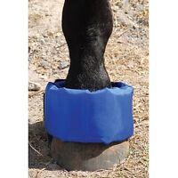 Ez Ice Hoof Founder Wrap For Horses Equine