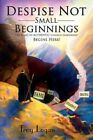 Despise Not Small Beginnings The Road to Authentic Church Leadership Begins Here Paperback – 15 Dec 2008