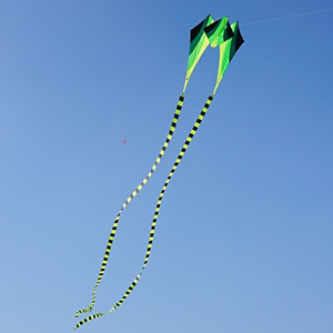 Besra Large Single Line 3D Diamond Flowing Frog Kite with 2 Long Tails Outdoor Fun Sports for Kids /& Adults