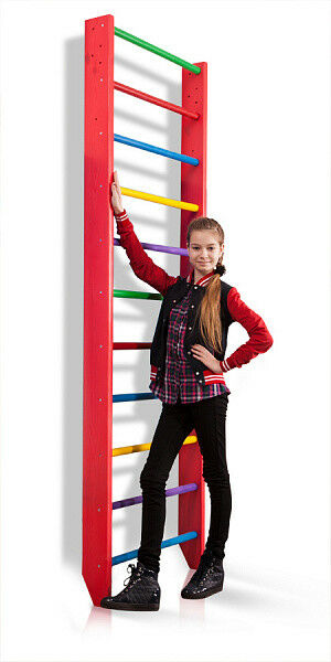 Swedish Ladder Climbing Wall Bars Wall Pull Up Bar & Ladder Home Gym