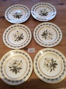 Set-Of-Six-Royal-Worcester-Bernina-8-034-Salad-Plates